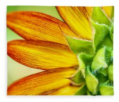 Sunflower Macro 1 Fleece Blanket