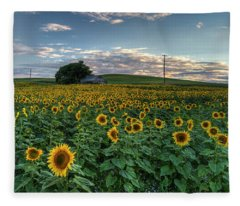 Sunflower Panorama Fleece Blanket