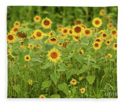 Sunflower Patch Fleece Blanket