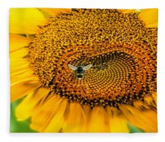 Sunflower Patch Fleece Blanket