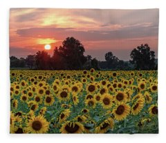 Sunflower Sunset II Fleece Blanket