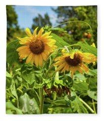 Sunflowers In Sunshine Fleece Blanket