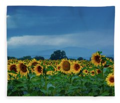 Sunflowers Under A Stormy Sky Fleece Blanket