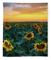 Sunflowers Under A Sunset Sky Fleece Blanket