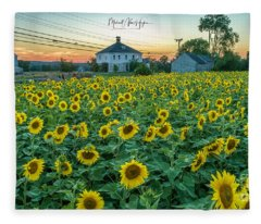 Sunflowers For Wishes  Fleece Blanket