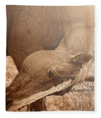 Sunlight And Grace Fleece Blanket