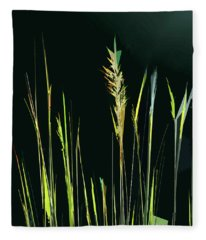 Sunlit Grasses Fleece Blanket
