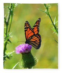 Sunlit Monarch  Fleece Blanket