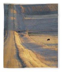Sunlit Road Fleece Blanket