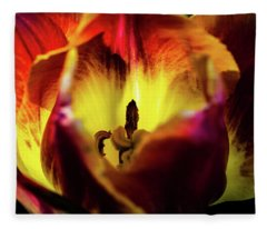Sunlit Tulip Fleece Blanket