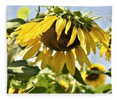 Sunny Day Sunflower Fleece Blanket