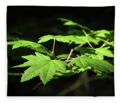 Sunny Summer Maple Fleece Blanket
