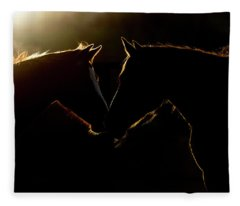 Sunrise Companions Fleece Blanket