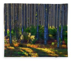 Sunrise On Tree Trunks Fleece Blanket