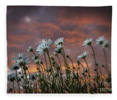 Sunset And Daisies Fleece Blanket