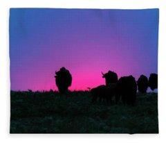 Sunset Bison Fleece Blanket