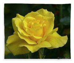 Sunsprite Rose 2 Fleece Blanket