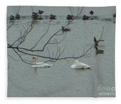 Swans With Geese Fleece Blanket