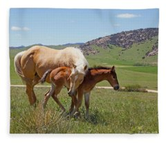 Sweet Comfort Fleece Blanket