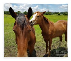 Sweet Horses  Fleece Blanket