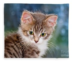 Sweet Kitten Fleece Blanket