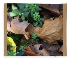 Sweet Sweet Woodruff -  Fleece Blanket