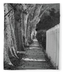 Sycamore Walk-grayscale Version Fleece Blanket