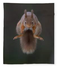 Symmetric Squirrel Fleece Blanket