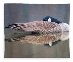 Taking A Nap Fleece Blanket