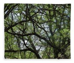 Tangled Trees Fleece Blanket