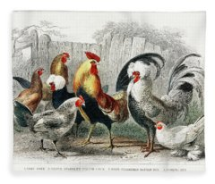 Taps And Hens From A History Of The Earth And Animated Nature Fleece Blanket