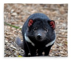 Tasmanian Devil Fleece Blanket