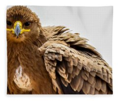 Tawny Eagle Close Up Fleece Blanket