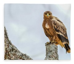 Tawny Eagle Fleece Blanket