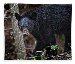 Tennessee Black Bear Fleece Blanket