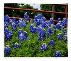 Texas Bluebonnets In Ennis Fleece Blanket
