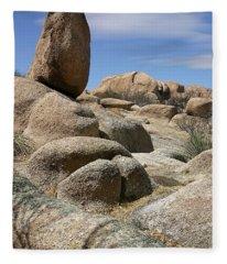 Texas Canyon Fleece Blanket