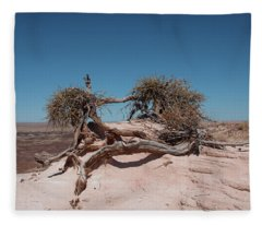 The American Southwest Fleece Blanket