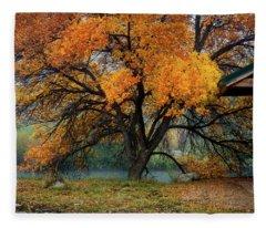 The Autumn Tree Fleece Blanket