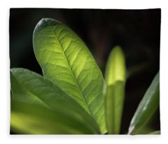 The Beauty Of A Leaf - Fleece Blanket