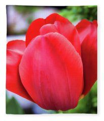 The Tulip Beauty Fleece Blanket