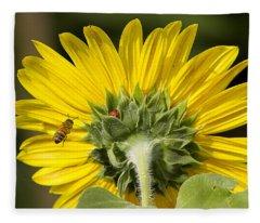The Bee Lady Bug And Sunflower Fleece Blanket