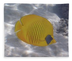 The Bluecheeked Butterflyfish Red Sea Fleece Blanket