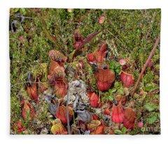 The Bog Fleece Blanket