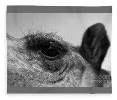 The Camels Eye  Fleece Blanket