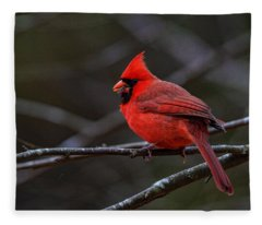 The Cardinal And The Sunflower Seed Fleece Blanket