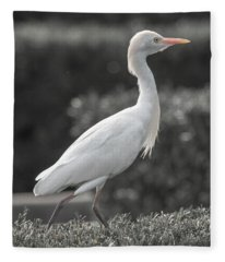 The City Bird Saint Augustine Fleece Blanket