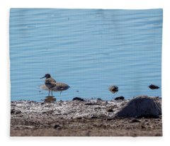 The Common Sandpiper Fleece Blanket