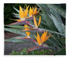 The Crane Flower - Bird Of Paradise  Fleece Blanket