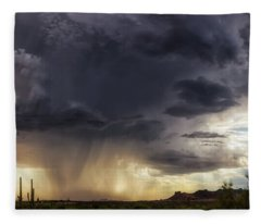 Fleece Blanket featuring the photograph The Day It Rained by Rick Furmanek